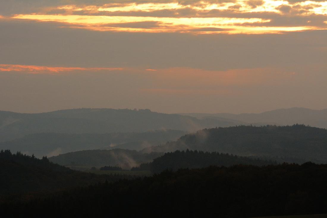 Morgenansitz im Rotwildrevier