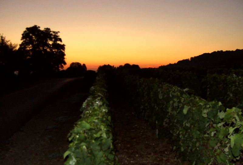 Morgendämmerung im Marnetal