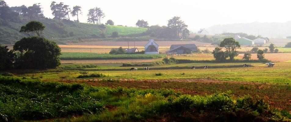 Morgendämmerung in der Bretagne