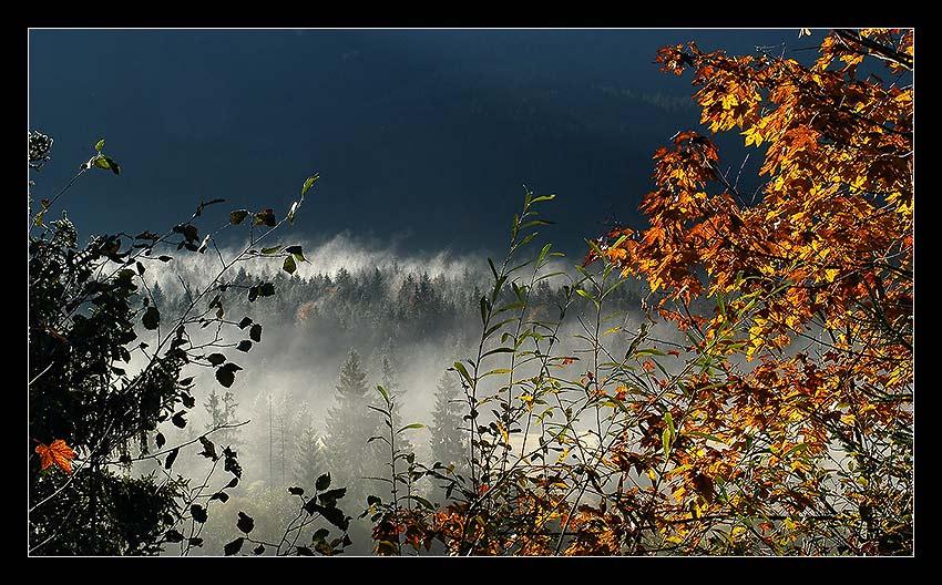 Morgendliche Herbststimmung