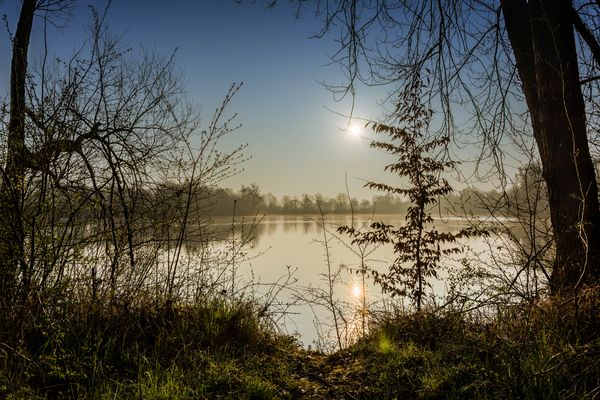 Morgendliche Ruhe
