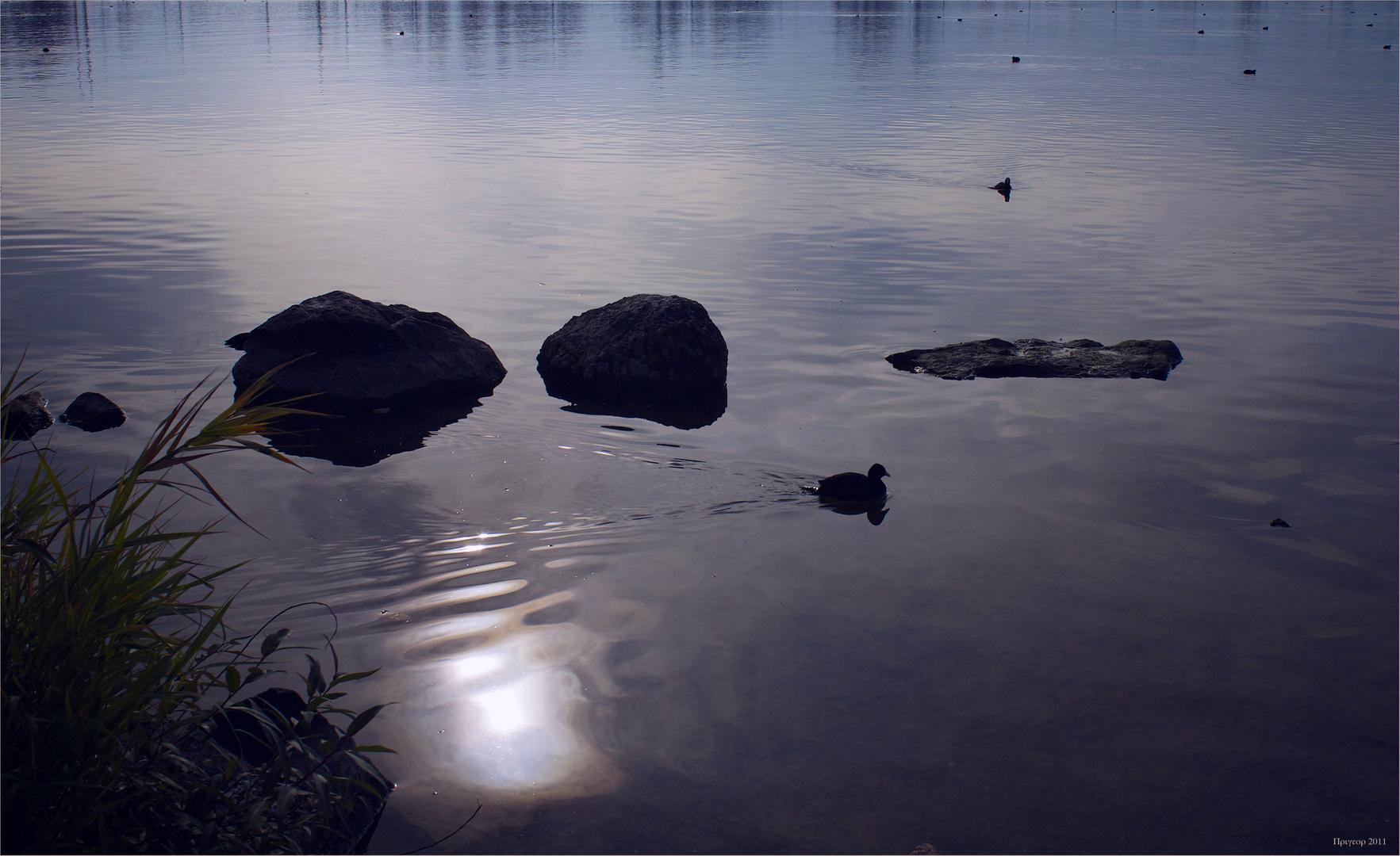 Morgendliche Stille am See