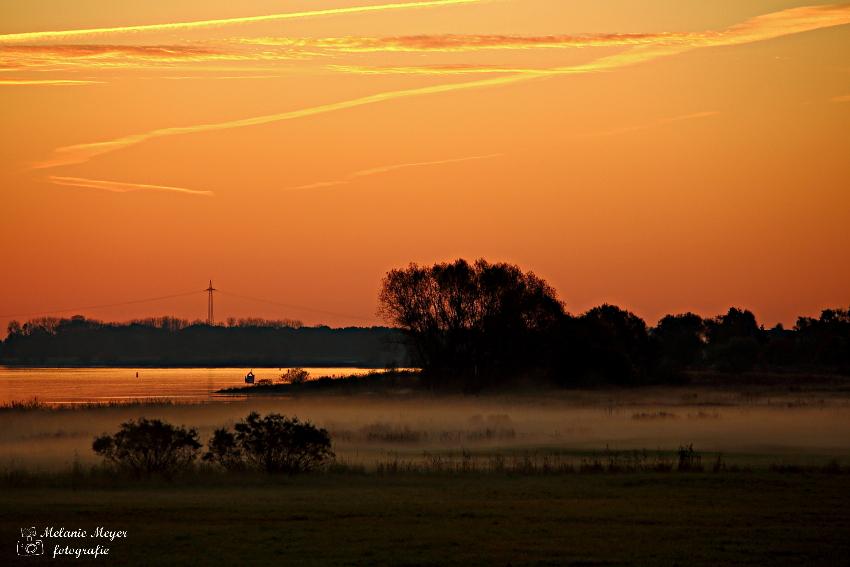morgendliche Stimmung an der Elbe (2)