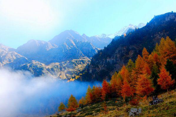 Morgendlicher Herbstnebel 1