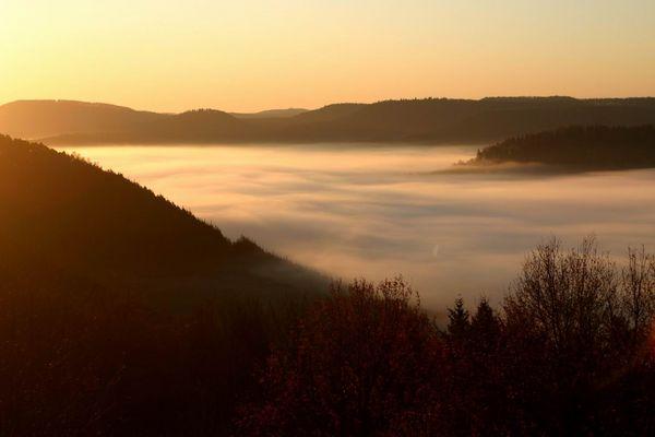 Morgendlicher Nebel im Pfälzer Wald, fotografiert von der Burg Lemberg