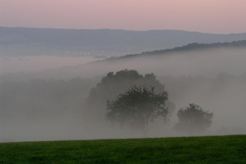 Morgendunst im Westerwald
