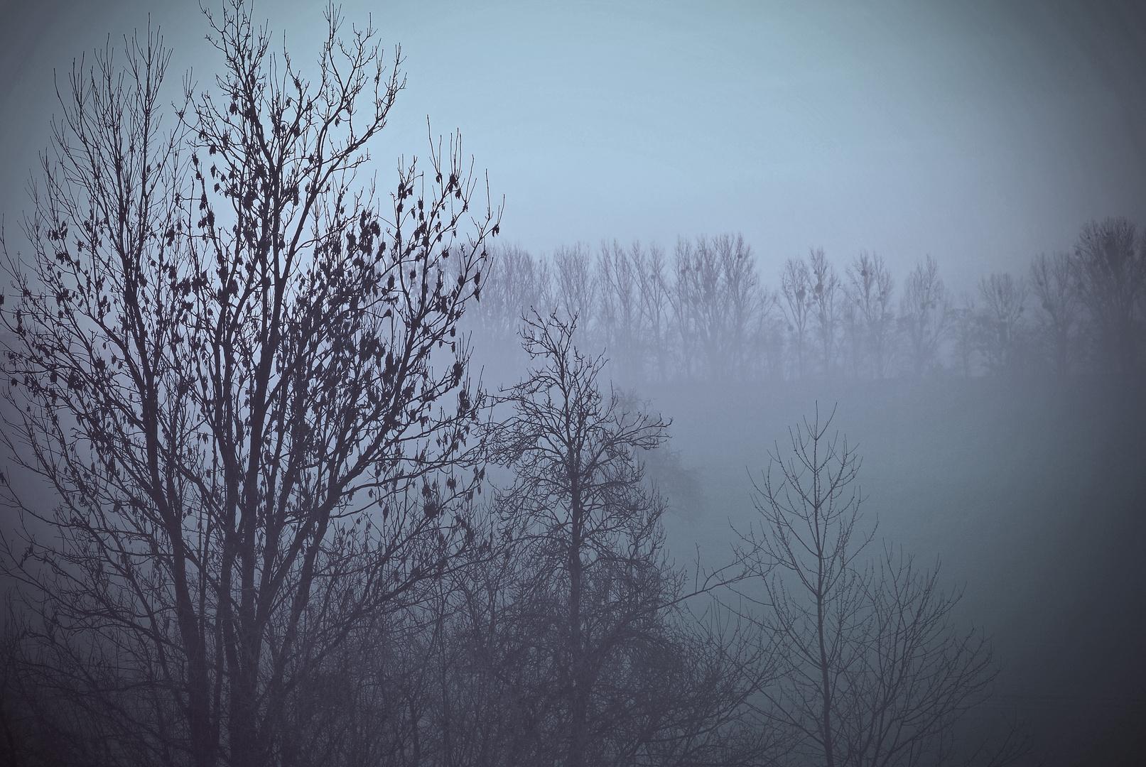 ...Morgengrauen...
