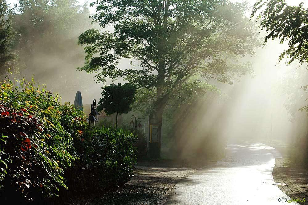 Morgengrauens