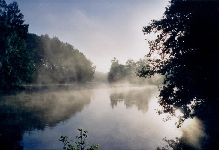 Morgenimpression in Schweden