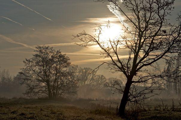 Morgenlandschaft im Herbst