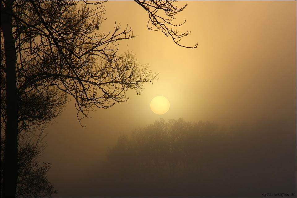 ~Morgenlicht~