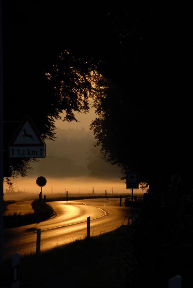 Morgenlicht 1
