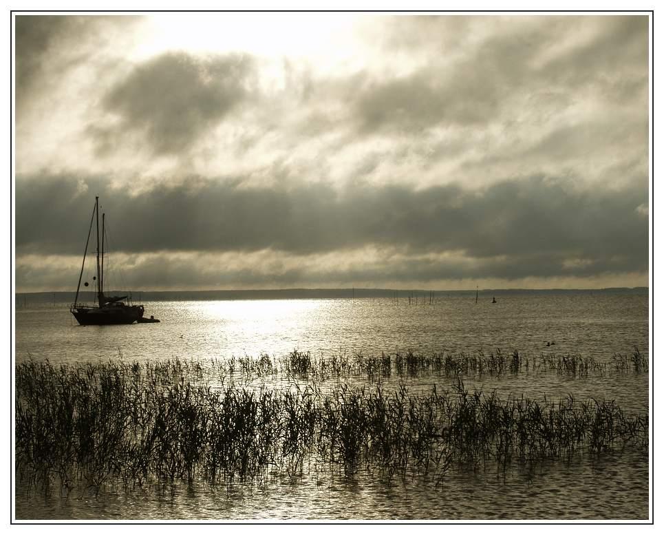 Morgenlicht am Müritzsee