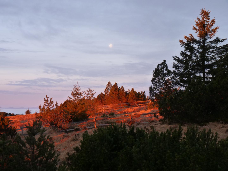 Morgenlicht am Schliffkopf (SchwW)