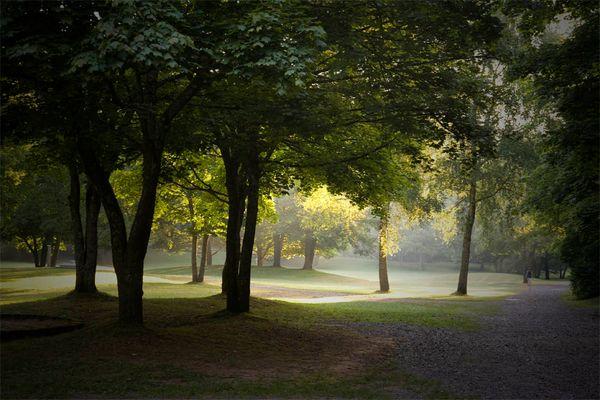 Morgenlicht im Stadtpark