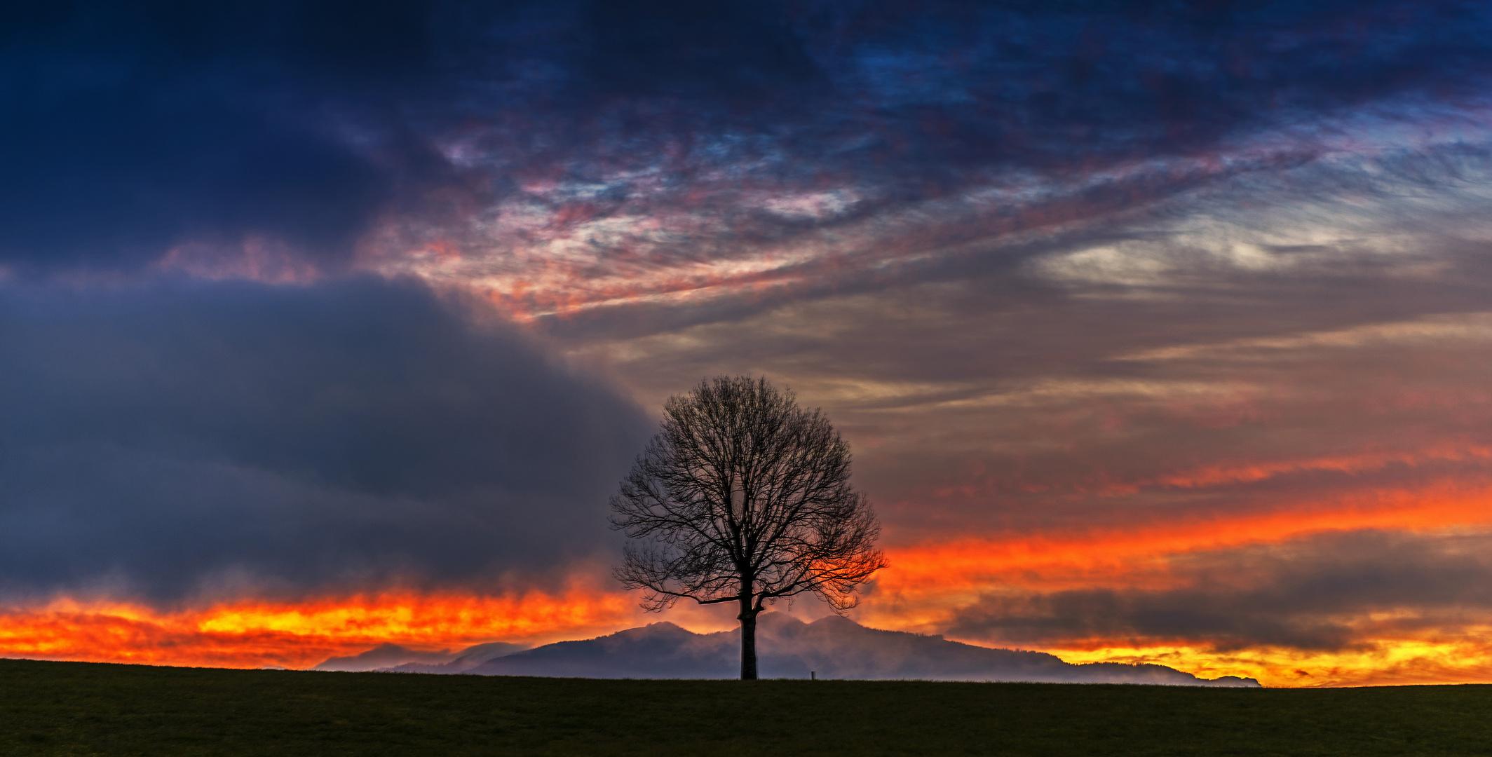 Morgenlicht im Voralpenland