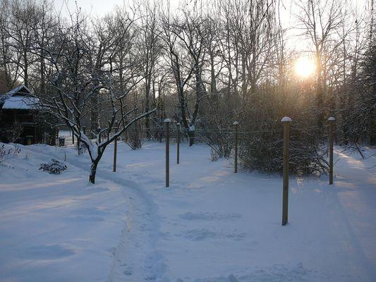 Morgenlicht leuchtet (EG 455)