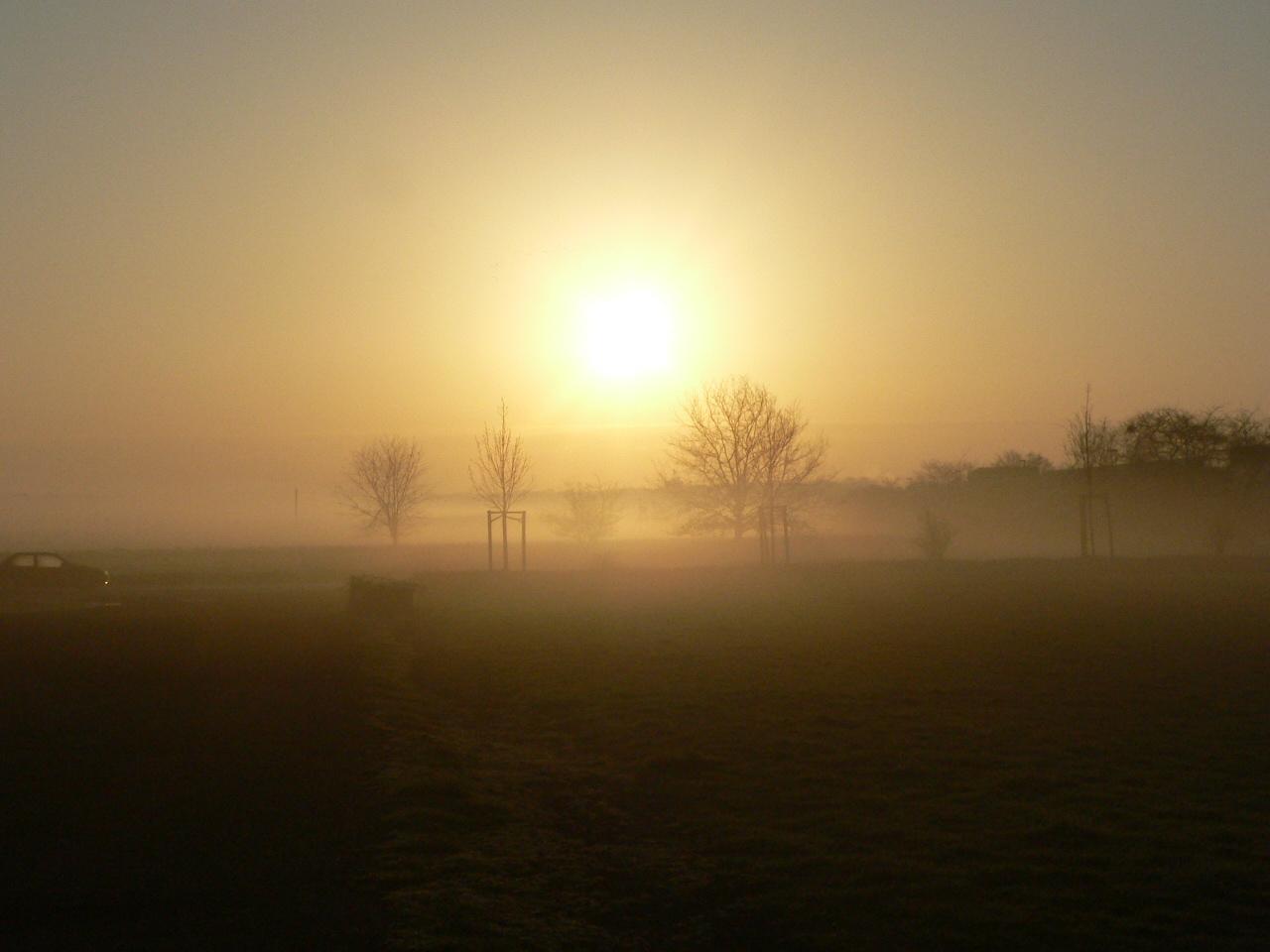 Morgennebel-2