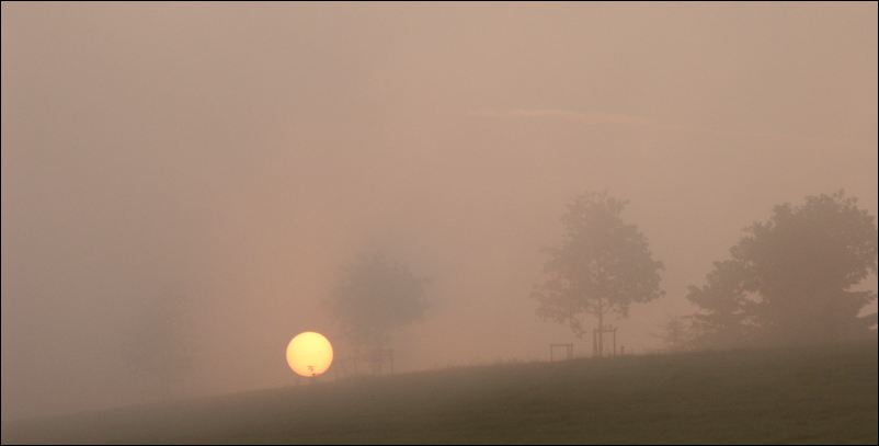 Morgennebel 2