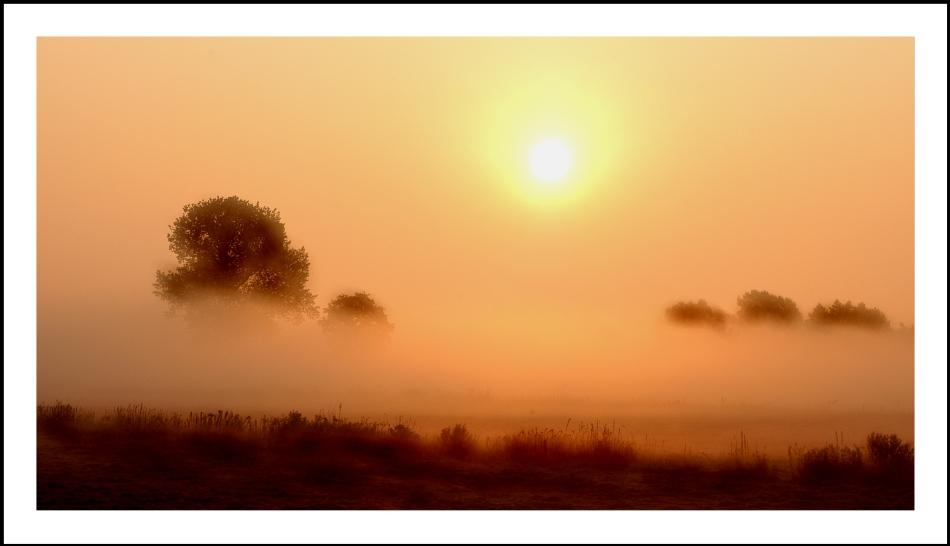 Morgennebel 3