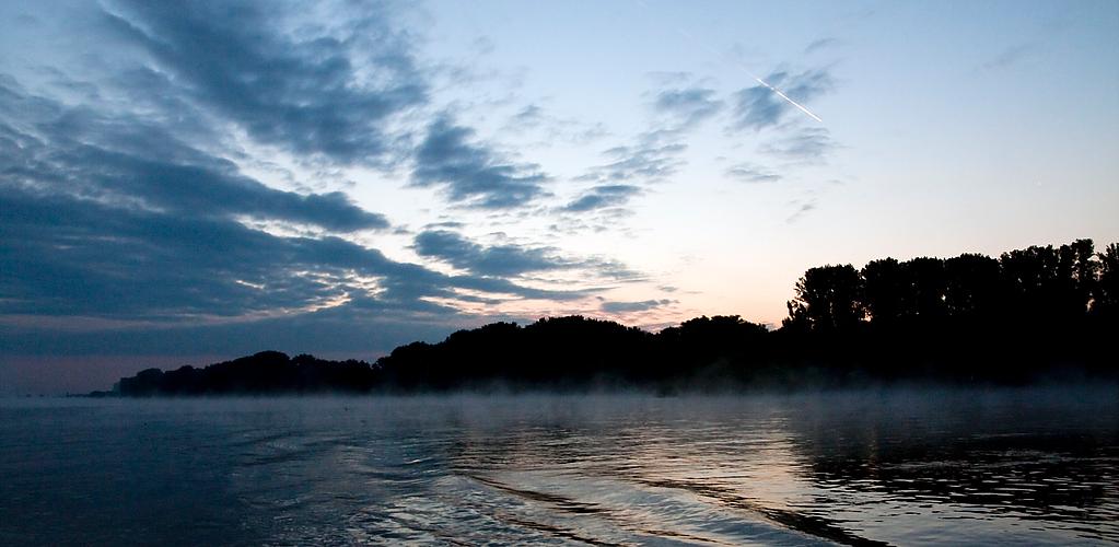 Morgennebel am Neckar