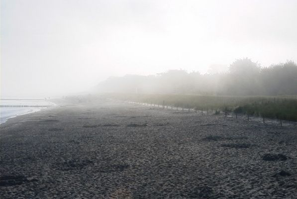 Morgennebel am Ostseestrand