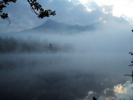 Morgennebel am Schwarzsee
