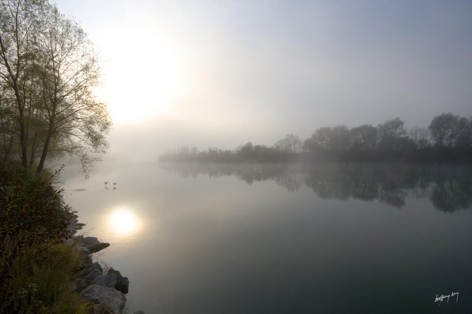 Morgennebel an der Drau