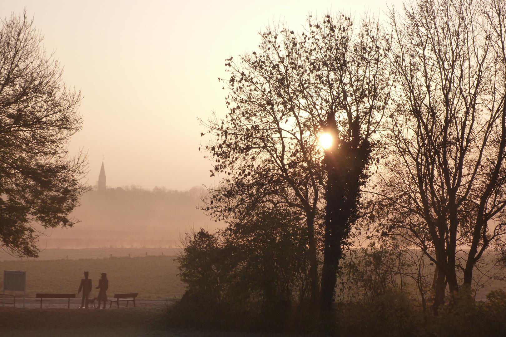 Morgennebel an der Weser