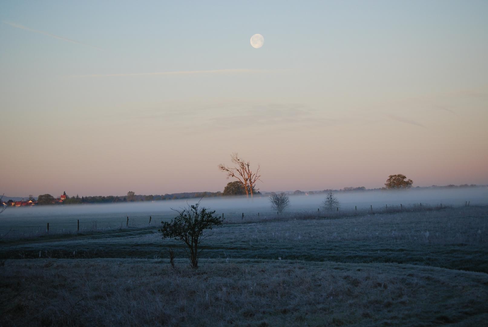 Morgennebel Bild 2