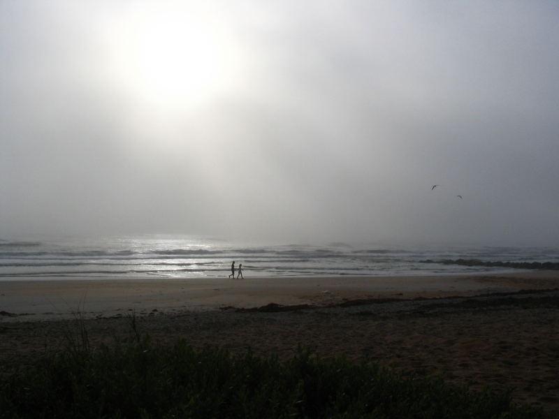 Morgennebel - heute bei Flagler Beach