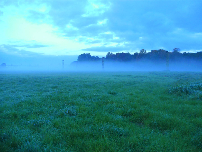 Morgennebel im Frühherbst 10