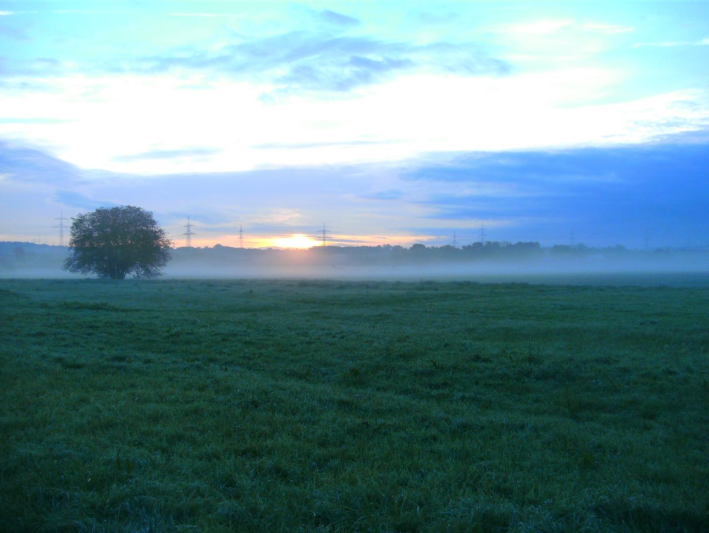 Morgennebel im Frühherbst 11