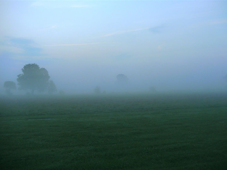 Morgennebel im Frühherbst 5