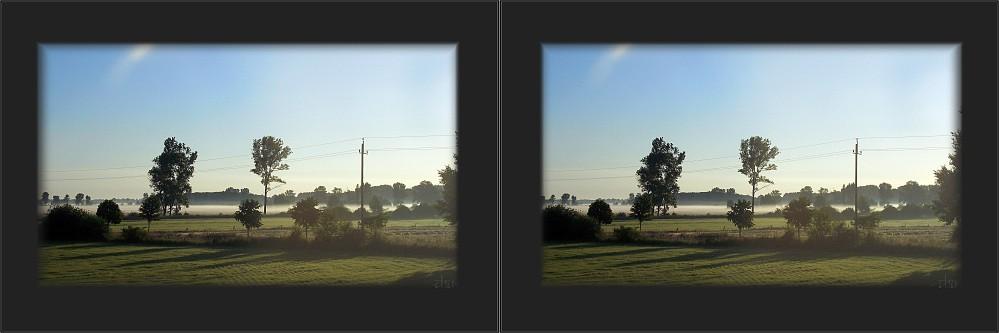 Morgennebel im Herbst