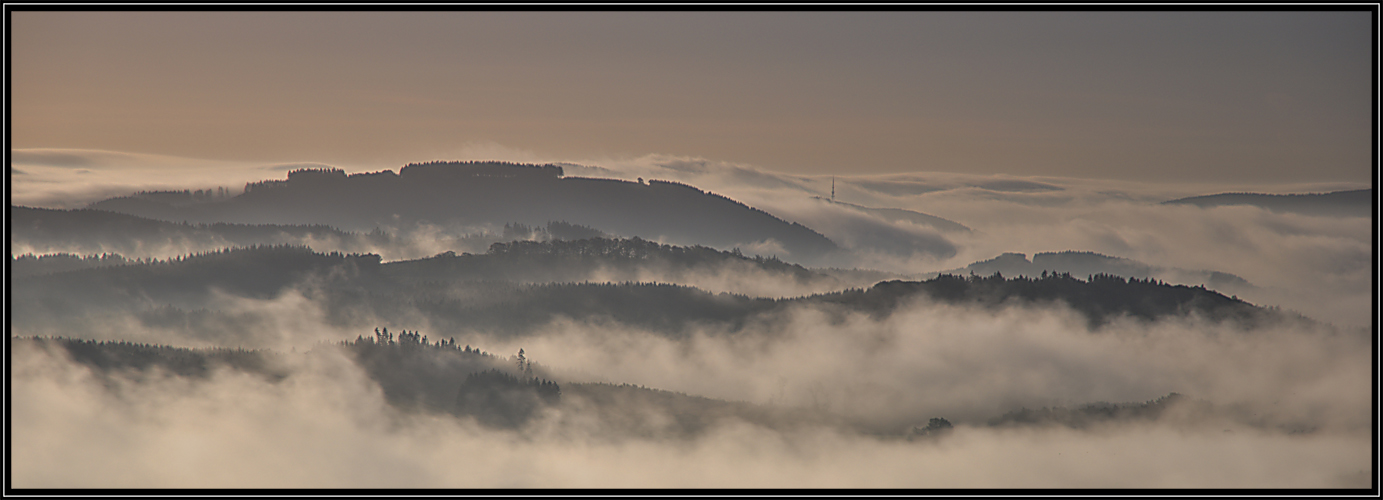 Morgennebel im Sauerland