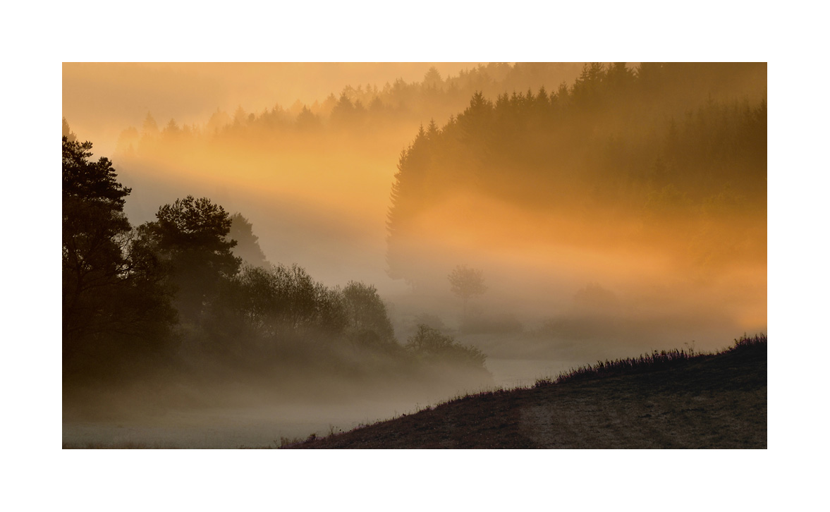 Morgennebel im Tal