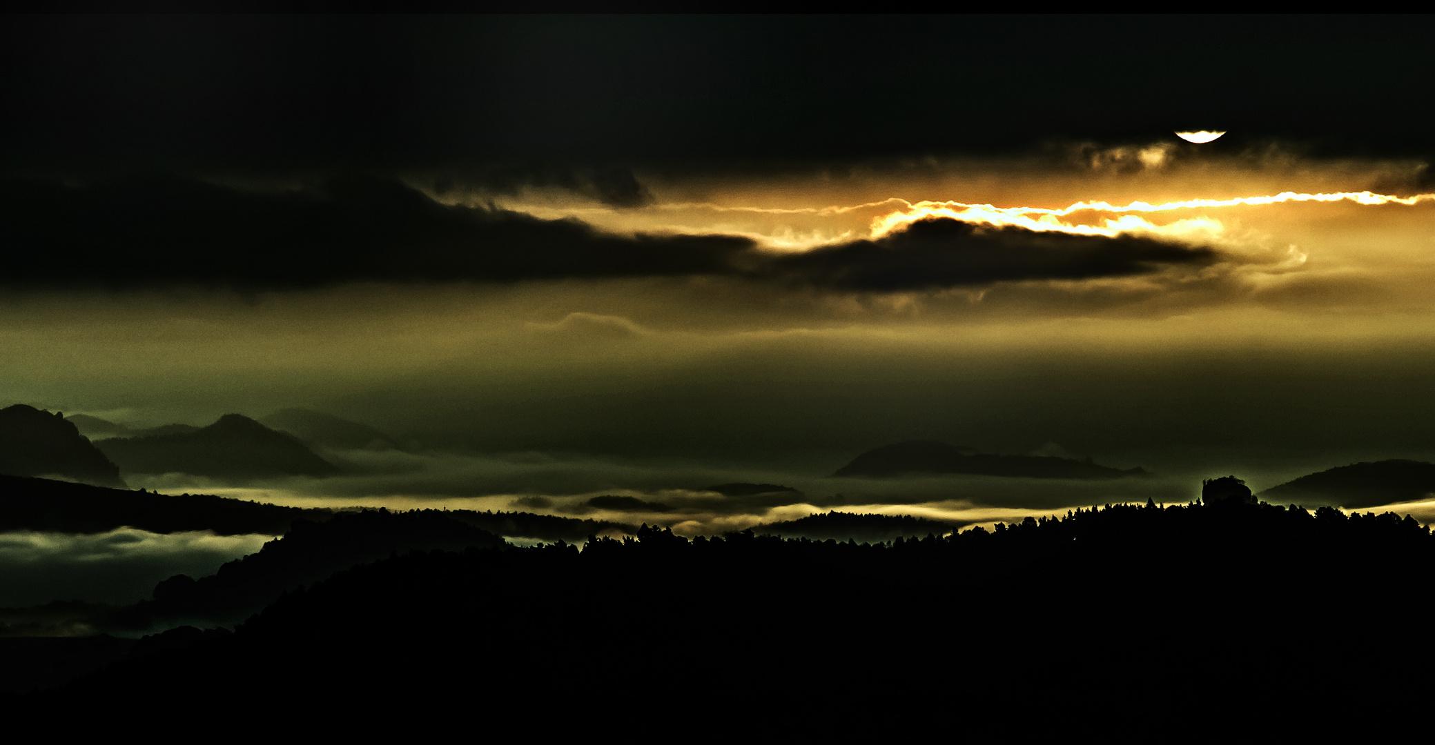 Morgennebel in der sächs.Schweiz