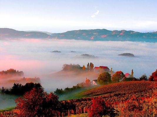 Morgennebel in der Südsteiermark
