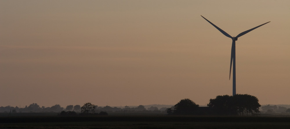 Morgennebel in Nordfriesland