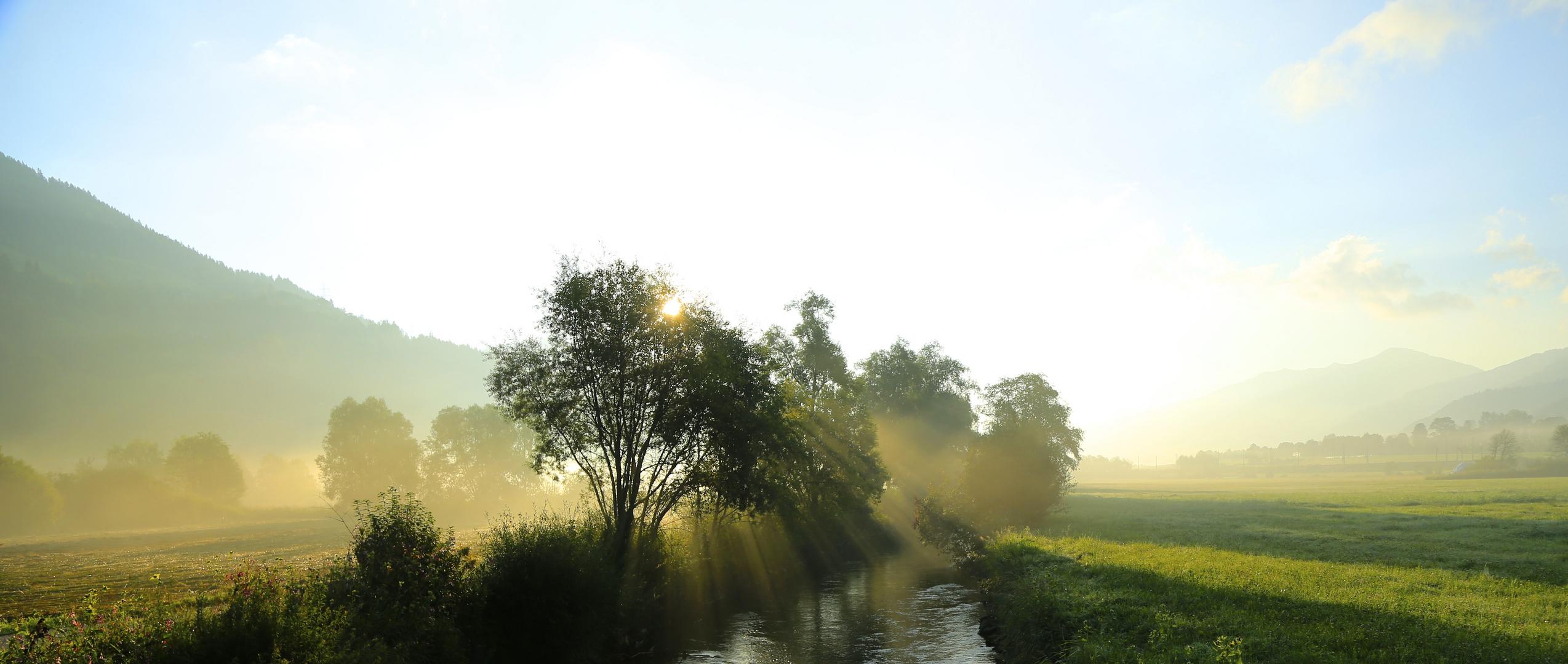 Morgennebel Nähe Rottenmann