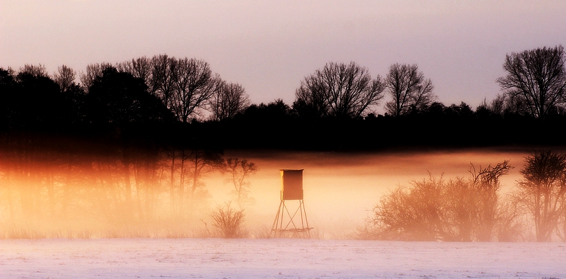 Morgennebel über den Feldern