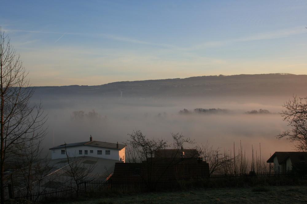 Morgennebel über der Reuss