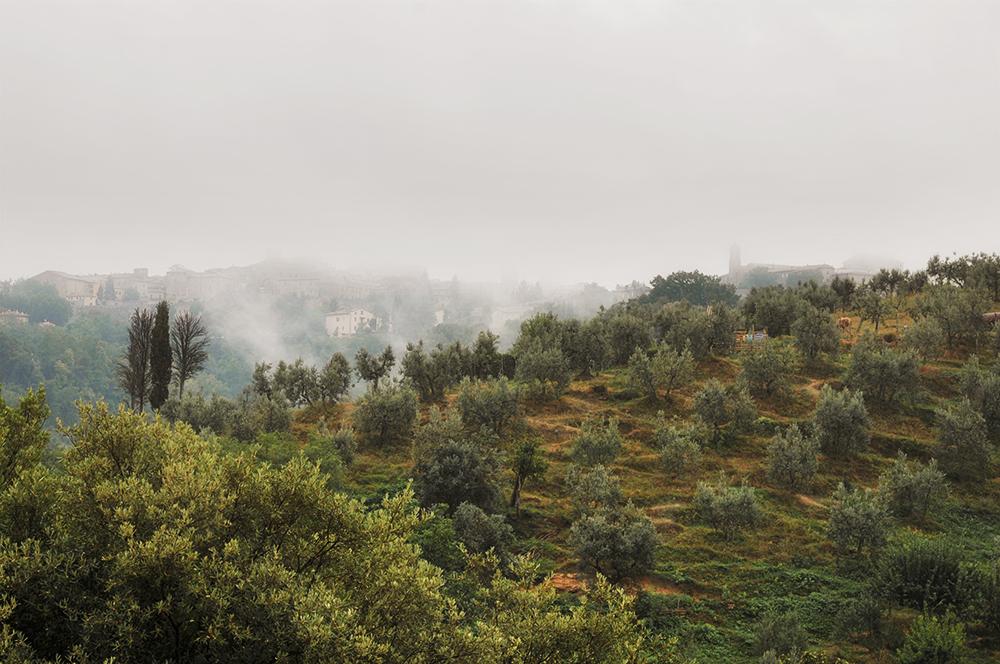Morgennebel über Volterra