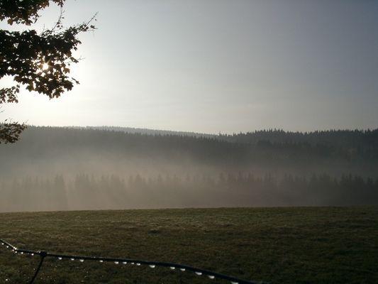Morgennebel über Wittgenstein