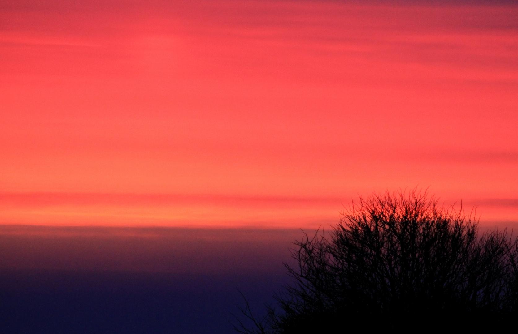 Morgenröte auf Amrum