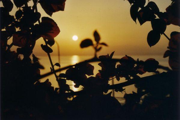 Morgenröte die Zweite