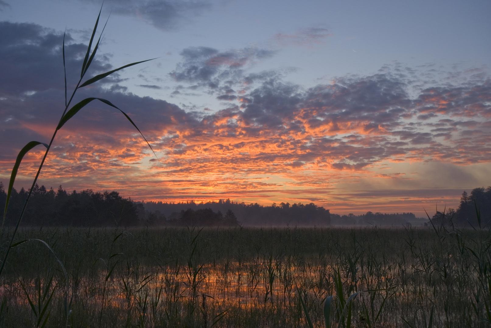 Morgenrot am Breitenauersee