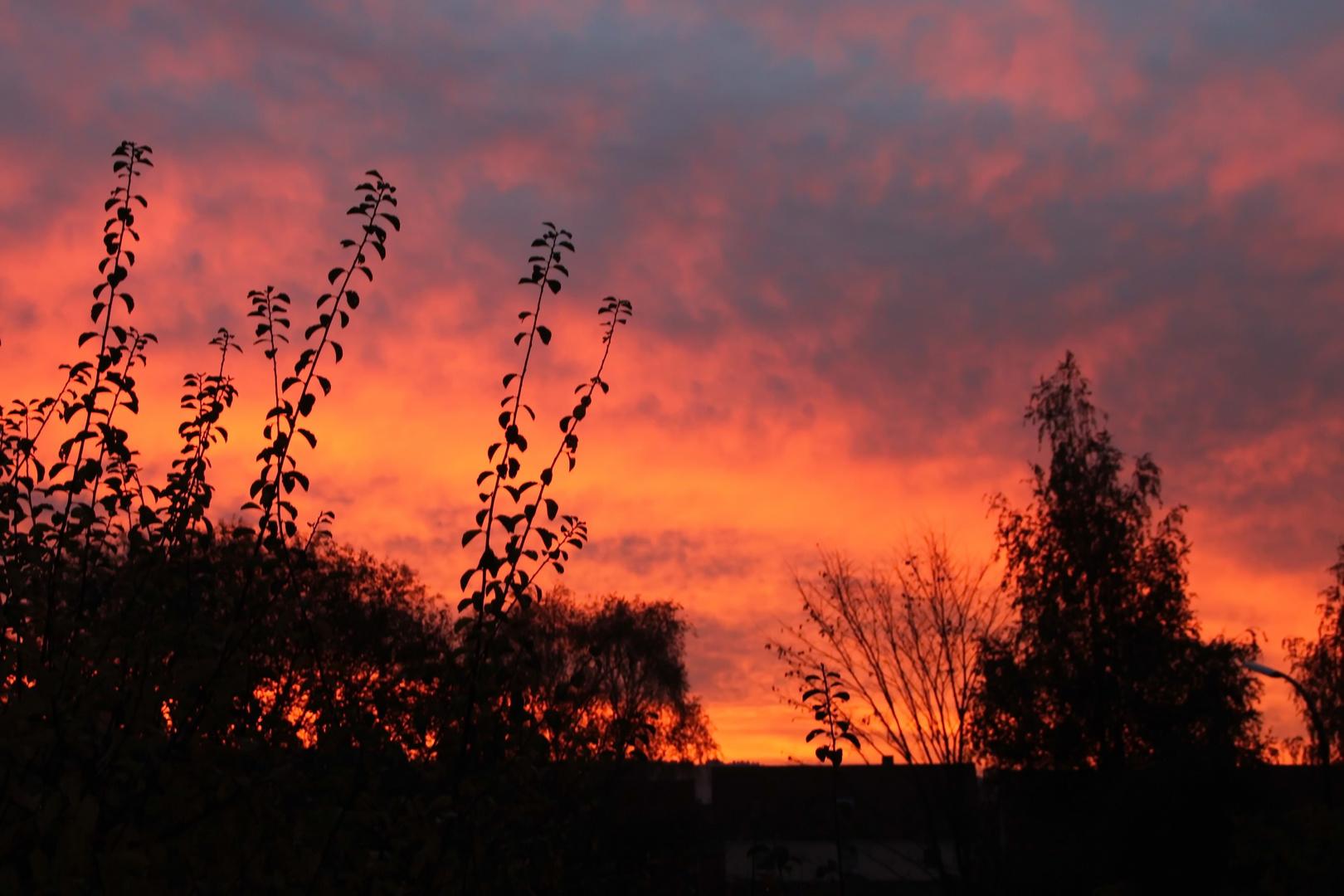 Morgenrot im Frankenland