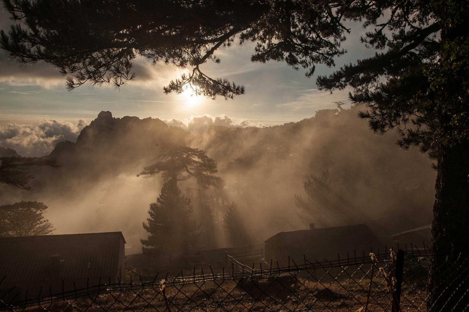 Morgens am Col de Bavella